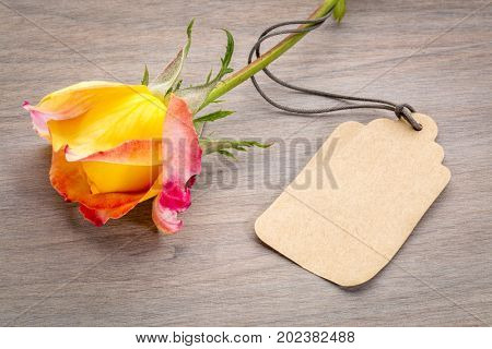 beautiful rose with a blank price tag against grained wood