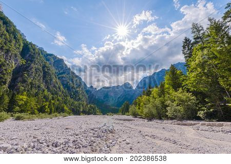 Dry mountain riverbed, woods and trees, mountains in background