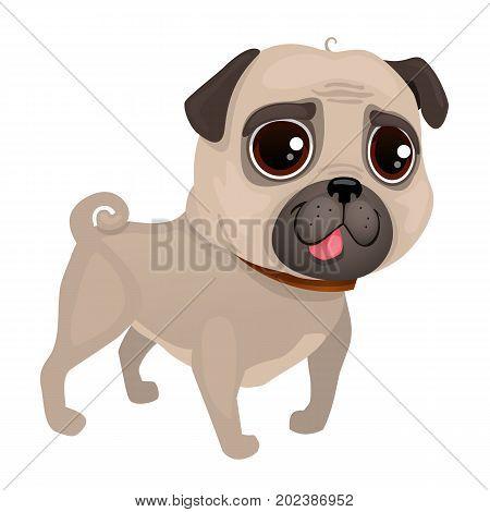 Vector illustration of dog pug breed. Portrait of Pug Dog. Pug of cartoon style.