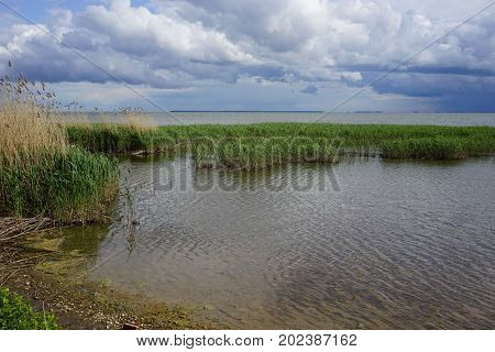 The estuary at the Curonian spit in the Kaliningrad region in the spring on a Sunny day