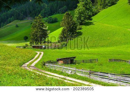 muletrack organic farming mulattiera mulateer meadow landscape