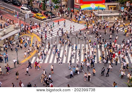 TOKYO, JAPAN JUNE 28 - 2017: Top view of crowd of people crossing in Shibuya street, one of the busiest crosswalks in the world, in the Ginza District in Tokyo, Japan.