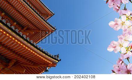 Beautiful Tokyo - Sensoji-ji, Temple In Asakusa, Japan