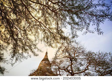 The top of Shwesandaw Pagoda birdeye view
