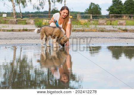 Woman With An Elo Puppy Kneels Beside A Puddle