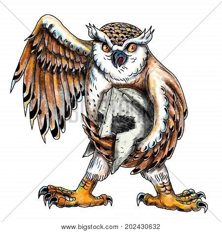 Tattoo style illustration of an Owl nocturnal bird of prey from the order Strigiformes holding a Spartan helmet viewed from front on isolated background.