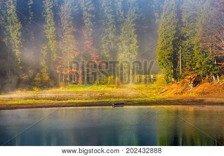 Morning Fog On The Lake In Spruce Forest