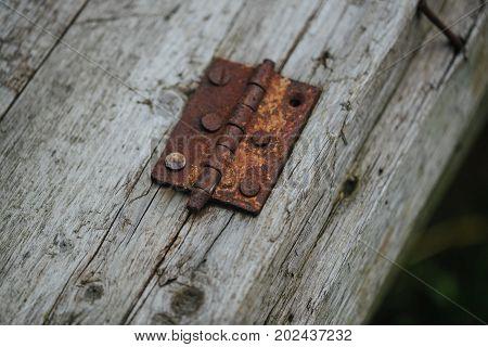 Old and rusty door hinge on a wooden door. Object photo.