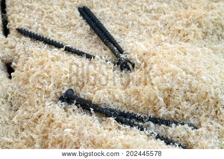 Screws and wooden shavings on the boards lite