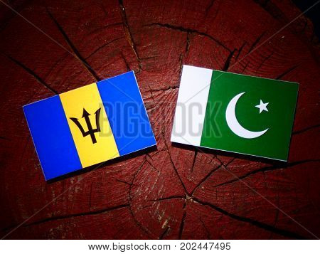 Barbados Flag With Pakistan Flag On A Tree Stump Isolated