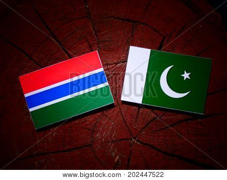 Gambia Flag With Pakistan Flag On A Tree Stump Isolated