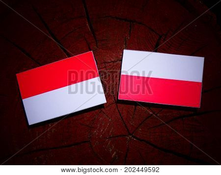 Indonesian Flag With Polish Flag On A Tree Stump Isolated