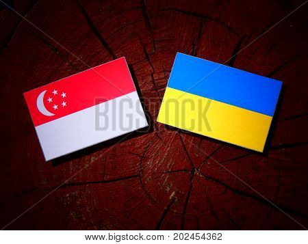 Singaporean Flag With Ukrainian Flag On A Tree Stump Isolated