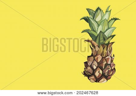 Composition with watercolor hand drawn ananas. Yellow composition. Background for food packaging, cards posters