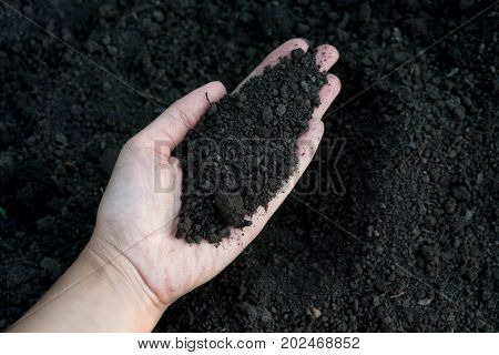 Female hand holding a handful of rich fertile soil that has been newly dug over or tilled in a concept of conservation of nature and agriculture. Blurred motion the soil falling to the ground.