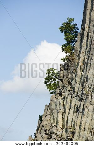 Mountain stone wall, wild rock formations with striped pattern and trees on edge.