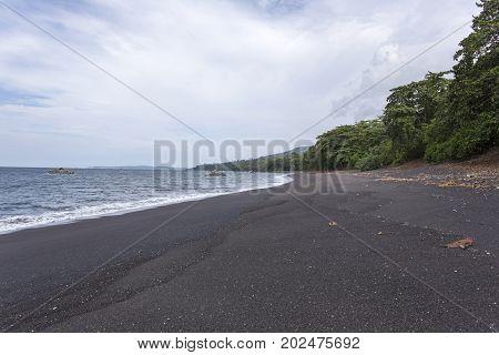 tangkoko park black sand Sulawesi in Indonesia