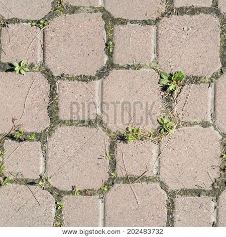 Concrete or cobble gray pavement slabs or stones for floor wall or path. Traditional fence court backyard or road paving. Image street blocks stones.