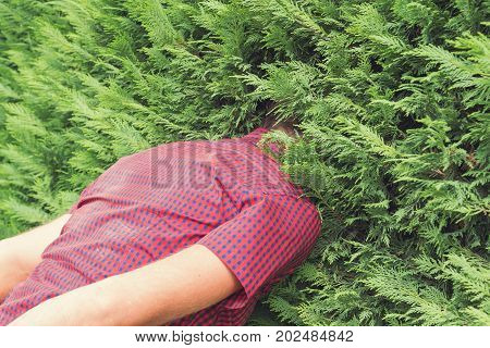 Faceless man hiding in a bush outdoors.