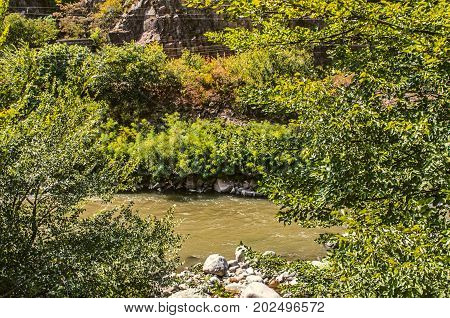Current Derbent River from the mountains with muddy water and stones among the trees of Armenia
