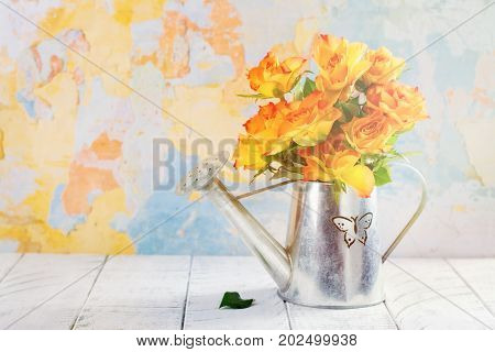 Roses in a zink watering can. Space for text. Happy mothers day concept or greeting card