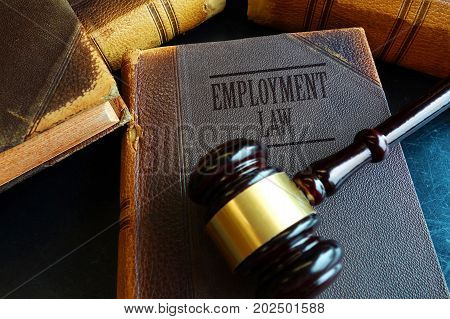 Employment Law book with a legal gavel