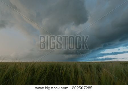 Scary gray clouds tightened the sky. Outdoors photo.