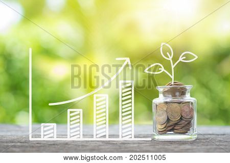 Plant growing in savings coins and growing graph on wooden. Investment and interest maintenance concept