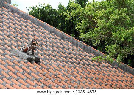 Shisa (guardian From Kingdom Of Ryukyu) On The Roof In Okinawa, Japan