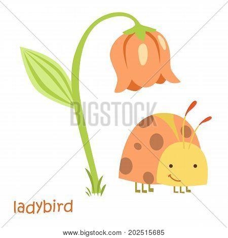 Ladybug isolated. Drawing ladybug for a child