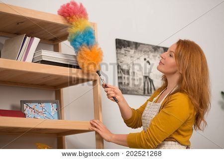 Close up view of housewife cleaning dust with colorful brush. Housekeeping time, mid aged female taking care of wooden shelves.