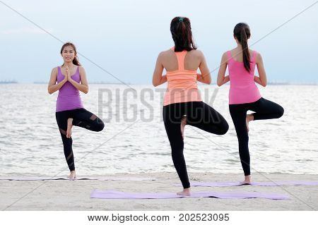 Group of young healthy people practicing yoga tree pose asana on the beach healthy lifestyles wellness well being