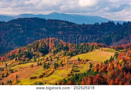 Gorgeous Mountain Ridge Behind The Forest On Hills