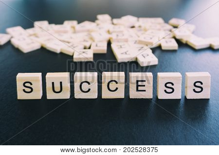 Success Words On A Wood Blocks, Focus On The Foreground With Filter And Analog Effect
