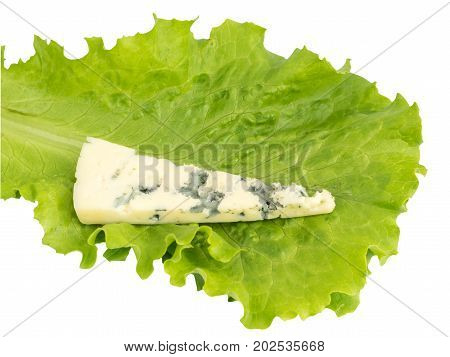 Cheese With Mold Isolated