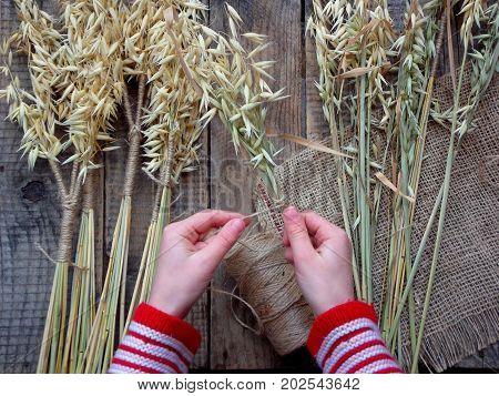 Making Of Didukh Of Spikelets Oats - Christmas, Symbolic And Ceremonial Sheaf Ukrainian, Symbolizing