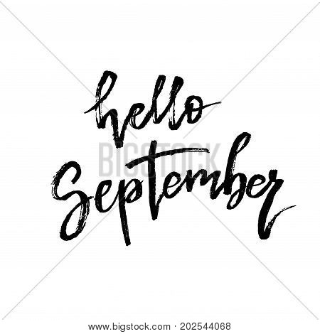 Hello September. Autumn brush lettering. Fall greteng cards, banners, autumn season phrase for posters design. Handwritten modern brush pen calligraphy isolated. Vector illustration stock vector.
