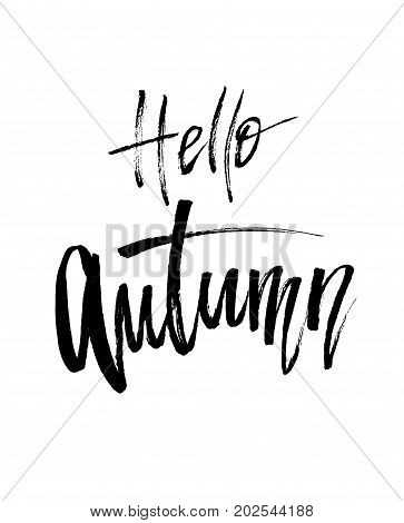 Hello Autumn brush lettering. Fall greteng cards, banners, autumn season phrase for posters design. Handwritten modern brush pen calligraphy isolated. Vector illustration stock vector.