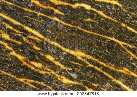 Golden ore in dark stone. Golden vein in dark stone with shallow focus on ore gold.