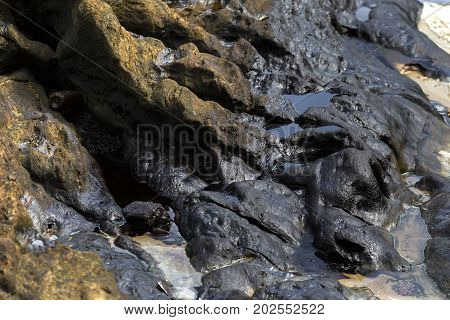 Crude oil spill on stone on the beach from oil spill accident