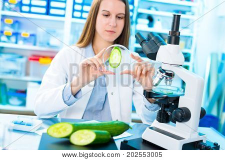 Checking fruit and vegetables for harmful elements. Laboratory for Inspection of Food Quality