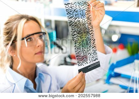 Young attractive female scientist with protective eyeglasses examining DNA autoradiogram test results in the scientific biochemical laboratory