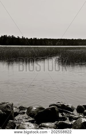 The waters of Lake Itasca and the rocks which border the beginning of the Mississippi River(black and white