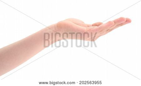 Child's hand isolated on a white background.