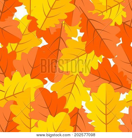 Seamless pattern of bright multi-colored oak leaves, red, yellow, orange. The leaf fall. Autumn background. Vector