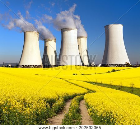 Panoramic view of Nuclear power plant with golden flowering field of rapeseed canola or colza - Slovakia - two possibility for production of electric energy