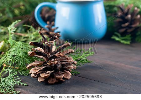 Fir   Bumps Cones, Blue Cup Cocoa On The Dark Wooden Background