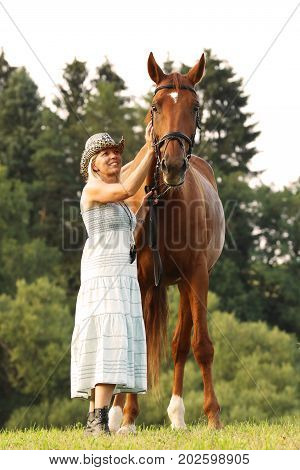 Woman caress her horse on meadow on summer afternoon