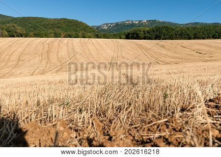 Landscaped view with rolling hills and tractor trials that bring you in the depths of the landscape. The summer is at its end and fields have already been harvested in the French europese pre alps