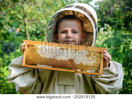 The boy beekeeper works on a beehive at the hive. Apiary. Bees Apiculture